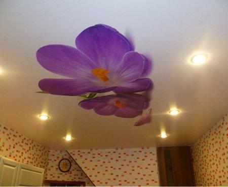 Фотопечать на потолке для кухни (цветы)