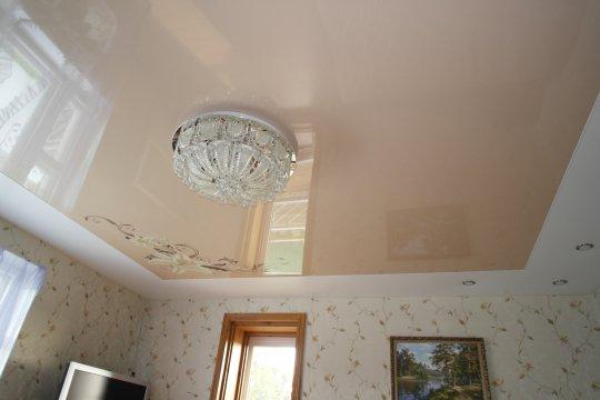Гостиная с одноуровневым натяжным потолком