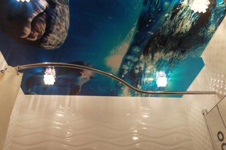 Натяжной потолок с фотопечатью (дельфины)