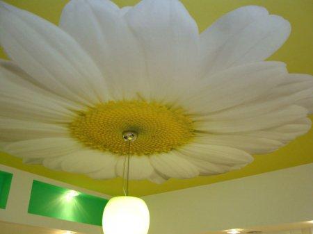 Одноуровневый натяжной потолок с фотопечатью