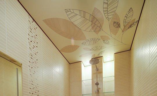 Одноуровневый потолок с фотопечатью
